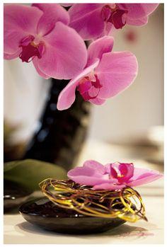Les 174 Meilleures Images De Zen Attitude Image Zen
