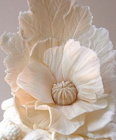 Bas-Relief Flower