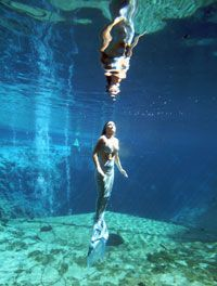The mermaids of Weeki Wachee in Florida. Must go visit them!!