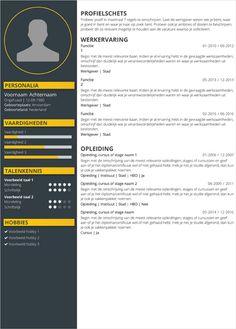 Maak online een cv met onze app in 3 stappen. Gegevens invoeren, layout kiezen en aanpassen, downloaden.