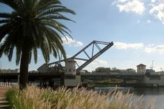 Tampa's Riverwalk provides beautiful views of the downtown waterfront