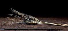Fraternità di Romena Onlus  La benedizione di #romena nasce dall'unione di una preghiera irlandese con una uruguayana  Possa la via crescere con te possa il vento essere alle tue spalle possa il sole scaldare il tuo viso possa Dio tenerti nel palmo della Sua mano. Prenditi tempo per amare, perché questo è il privilegio che Dio ti dà.... http://beltramisandro.blogspot.com/2016/02/fraternita-di-romena-onlus-la.html