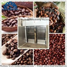 Coco Bean Dehydrating Machine Email: info@food-machines.org Website: www.fooddryingoven.com