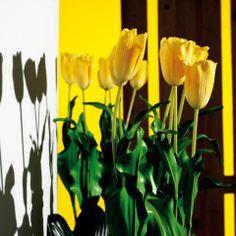 Magnifici tulipani artificiali.