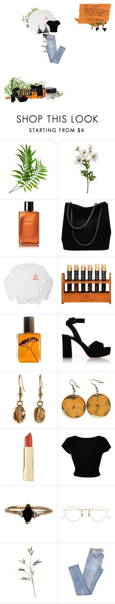 """simply orangy"" by brendafufu ❤ liked on Polyvore featuring Chanel, Gucci, Flidais Parfumerie, Miu Miu, NOVICA, Kiki de Montparnasse, CO, LUMO and Eyevan 7285"