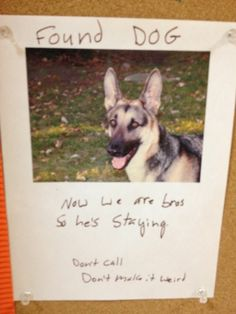 15 Most Important Things Ever Found On A Bulletin Board. So funny