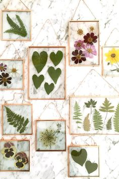 Stunning Pressed Flower Art by Karly Murphy Virginia-based artist Karly Murphy prides herself in creating everything by hand with the use of real pressed flowers and plants.I used to dry out and place all the flower petals I've received over the years int Diy And Crafts, Crafts For Kids, Arts And Crafts, Kids Diy, Decor Crafts, Creative Crafts, Pressed Leaves, Framed Leaves, Pressed Glass
