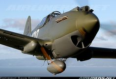 """""""160"""" Curtiss P-40C Tomahawk (Cn 14777) (N295RL) Tail Code (81-15P) Owned by Rod…"""