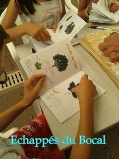 Echappés du bocal Playing Cards, 4 Kids, Jar, Botany, Game Cards