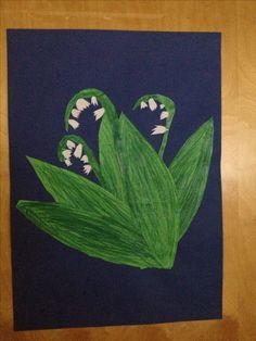 Kielo Lily, Spring, Lilies
