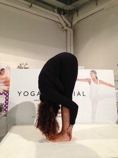 #yogafestival #yoga #yogaessential