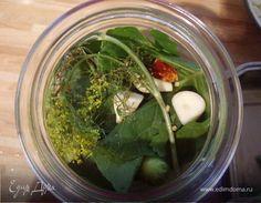 Соленые огурцы на зиму. Ингредиенты: укроп, вишня, черная смородина
