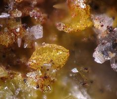 Lukrahnite.  Tsumeb Mine, Otjikoto Region, Namibie FOV=0.5 mm Photo Christian Rewitzer