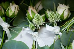 June boutonnieres with roses, sea holly and eucalyptus. Photo by Urban Anchor Photography.