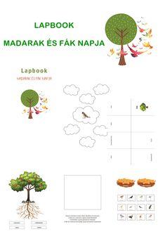 Május 10. a Madarak és fák napja. Ez az alkalom nagyon sok lehetőséget nyújt arra, hogy a gyermekek megtanuljanak néhány dolgot a madarakról és a fákról, illetve a köztük lévő szoros kapcsolatról.