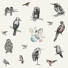 Birds - Fototapeter & Tapeter - Photowall