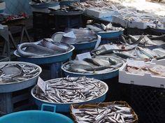 Fish market at Via Pignasecca, Naples