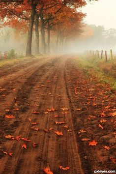 "~ Autumn ~ "" . . . traveled an October day over umber earthen clay, brushed in terra rosa"" ~M"