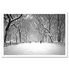 Snow on Poet Walk Central Park Art Print Poster NY MP-1146