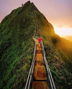 The Haiku Stairs, Honolulu, Hawaii Hawaii Vacation, Hawaii Travel, Hawaii Hotels, Stairway To Heaven Hawaii, Places To Travel, Places To See, Oahu Map, Voyage Hawaii, Honolulu Hawaii