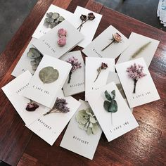 Isn't this a great original idea to give your wedding guest to remember this day by? Diy And Crafts, Paper Crafts, Fleurs Diy, Ideias Diy, Flower Aesthetic, Flower Cards, Gift Flowers, Dried Flowers, Diy Gifts