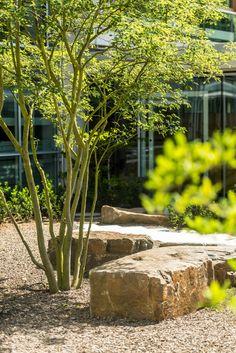 Wershofen garden design boulders and rock pear school atrium 16 Back Gardens, Small Gardens, Outdoor Gardens, Modern Landscaping, Backyard Landscaping, Landscape Architecture, Landscape Design, Succulent Gardening, Small Garden Design