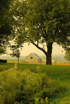 Love the country, we lived there.  Although we didn't have a farm, we had many a neighbors who did.