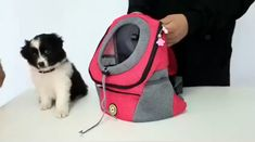 Exclusive pet explorer pet carrier bag, double shoulder travel backpack made from durable washable mesh with internal leash safety system - multiple colors available! Dog Backpack, Travel Backpack, Dog Purse, Pet Carrier Bag, Puppy Carrier, Pet Bag, Pet Fashion, Travel Fashion, Fashion Design