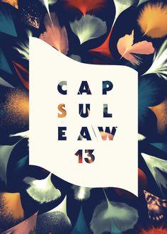 Capsule AW 13