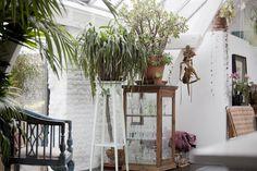 Un loft-atelier vert