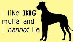 Gotta love big mutts!!!!!