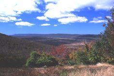 Canaan Valley National Wildlife Refuge