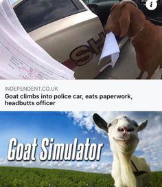 Love Memes Funny, Wtf Funny, Funny Relatable Memes, Funny Jokes, Hilarious, Dark Humour Memes, Dankest Memes, Book Memes, Gaming Memes