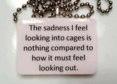 The sadness I feel looking into cages is nothing compared to how it must feel looking out.   WhatEveryDogDeserves.com