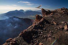 Kerinci Volcano. Photo by Yunaidi Joepoet