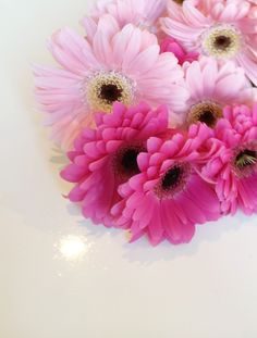 Pink flower bouquet. #daisies #bloom #petals