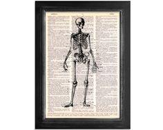 Vintage Skeleton Diagram - Dictionary Print by TR Art Studios at BOUF