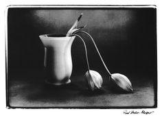Výtvarné pohlednice :: Foto MIDA Bowl Set, Vase, Black And White, Black White, Black N White, Flower Vases