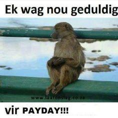 #afrikaans #jokes #SA #snaaks #humor