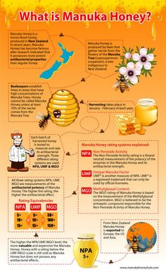 Sweet Truth About Health Benefits Manuka Honey Almost everyone knows how amazing honey is for getting rid of a sore throat. Manuka honey however Manuka Honey Health Benefits, Benefits Of Coconut Oil, Curcuma Benefits, What Is Manuka Honey, Shake, Mono Floral, Heart Attack Symptoms, Tomato Nutrition, Bee Keeping