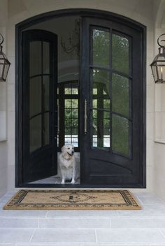New front entry doors. Double doors. Glass doors.