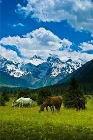 Mountains, Travel, Nature, Voyage, Viajes, Traveling, Trips, Tourism, Bergen
