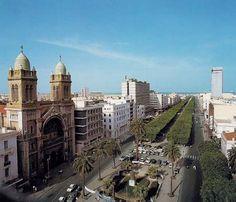 Tunis tunisien | Tunisia Hotels, Restaurants, Detinations & more! | Tunisia…