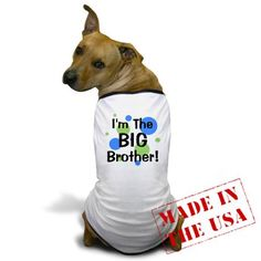 I'm The Big Brother! Dog T-Shirt for Varro.