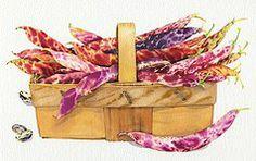 Mary Woodin Watercolour Illustration | Food
