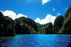 A scenic lagoon in the interior of #Miniloc Island (Philippines)  #Philippines = MORE Mesmerizing #Inlets