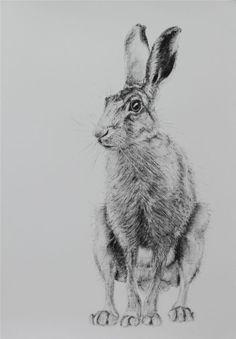 Jill Meager Artwork - b Gallery Artist Profilehttp://www.bgallery.co.uk/artist-profile.asp?artistid=699&button3=Go
