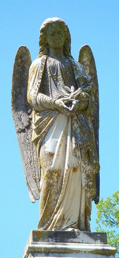 Angel with Lilies - Evergreen Cemetery in Paris, TX