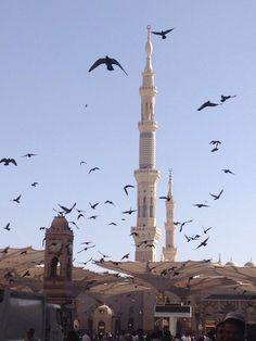 ❤️Visite interactive de l'Arabie Saoudie avec le blog du cyber tour du monde de oumie https://cybertourdumonde.wordpress.com