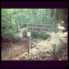 Mountain trail, 35801
